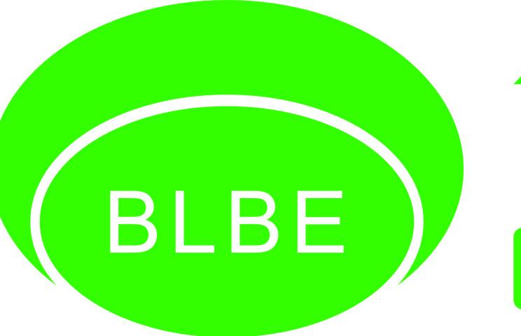 【伯麟合纵】广西伯麟合纵科技有限公司招聘:公司标志 logo