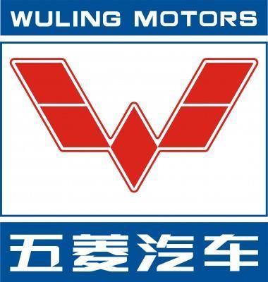 柳州五菱汽車工業有限公司招聘:公司標志 logo