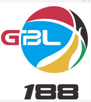 桂林新篮体育文化股份有限公司招聘:公司标志 logo