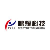 廣西南寧鵬耀電子科技有限公司招聘:公司標志 logo