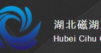 湖北磁湖文化传媒有限公司桂林分公司招聘:公司标志 logo